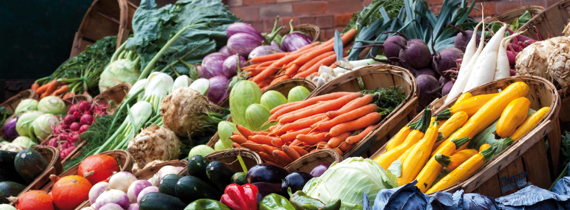 Bio-Nahrungsmittel