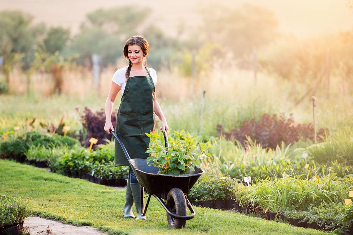 Nachhaltiges Gärtnern
